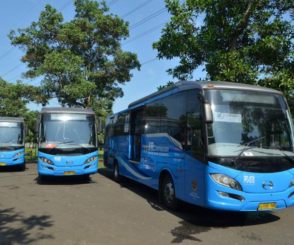 Image Public Transport